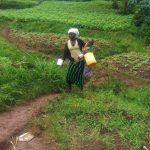 The Water Project: Emulakha Community -  Woman Walks Home With Jerrycan Filled With Spring Water