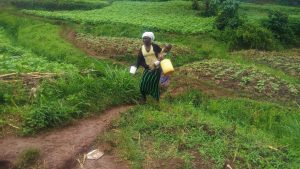 The Water Project:  Woman Walks Home With Jerrycan Filled With Spring Water