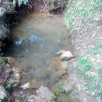 The Water Project: Handidi Community C -  Mwangu Spring Water Source