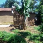 The Water Project: Mukhangu Community, Okumu Spring -  Bathroom Made From Dry Maize Stalks