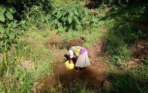 The Water Project:  Woman Fills Jerrycan In Spring