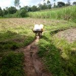The Water Project: Indete Community, Udi Spring -  A Wheelbarrow Used To Transport Water To Households