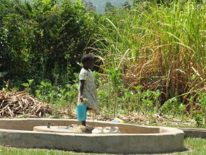 The Water Project:  Vilongo Community Sugarcane Plantation