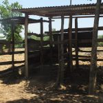 The Water Project: Vilongo Community -  Vilongo Community Animal Pen