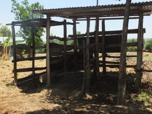 The Water Project:  Vilongo Community Animal Pen