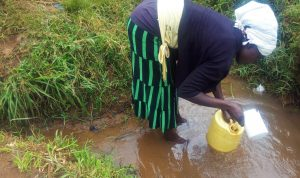 The Water Project:  Mary Scoops Water At Their Unprotected Spring