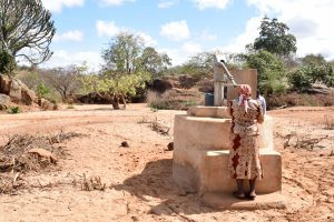The Water Project:  Nzalae Community Well