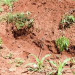 The Water Project: Mbuuni Community E -  Compost Pit