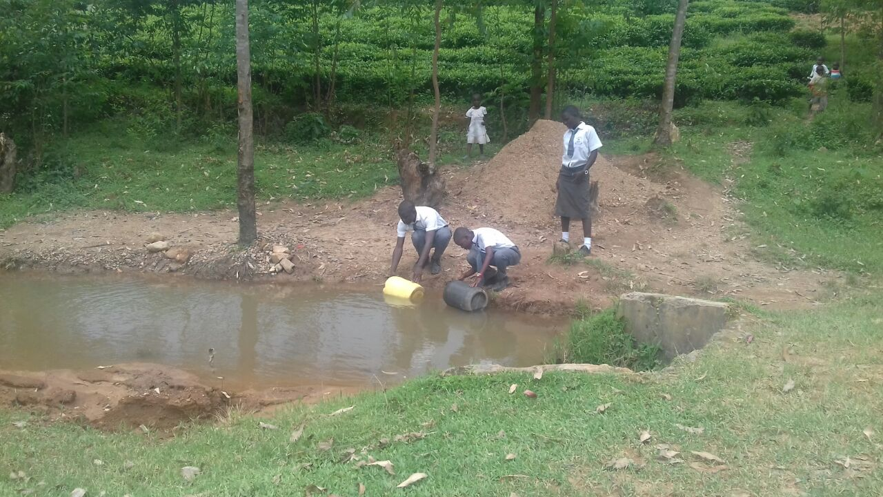 The Water Project : kenya18069-students-fetch-water-from-open-source