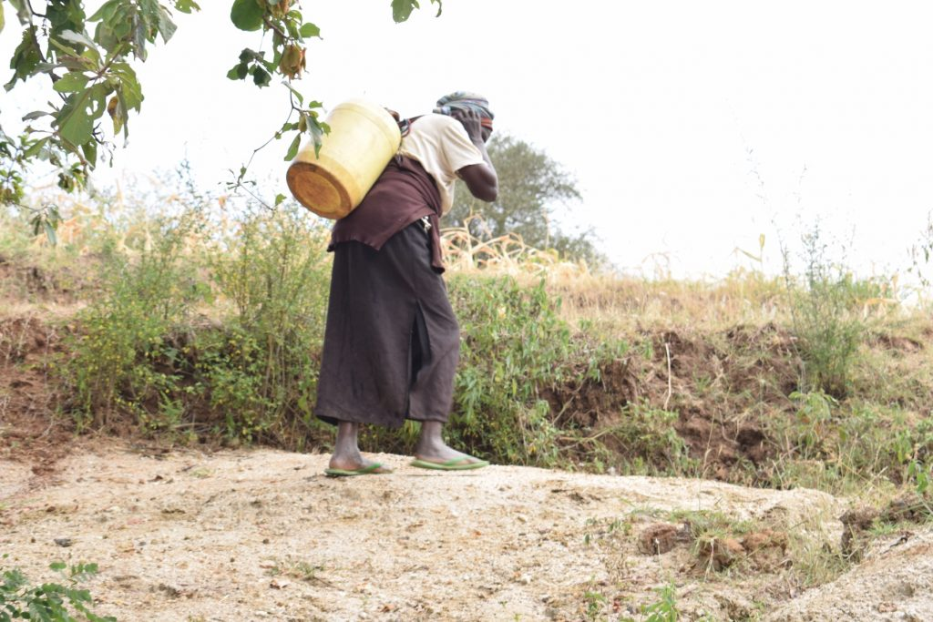 The Water Project : kenya18192-hauling-warter-home-from-source