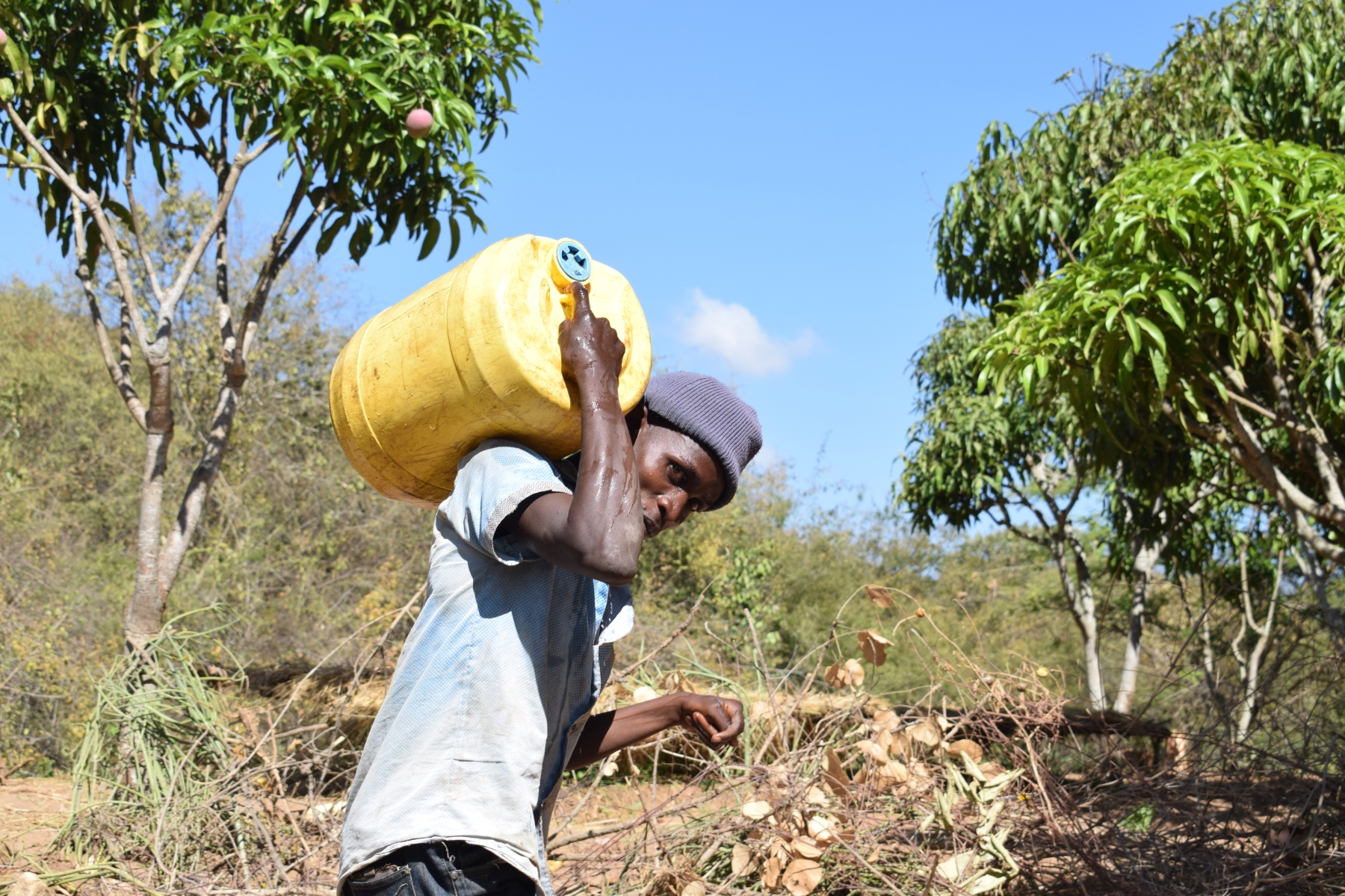 The Water Project : kenya18213-hauling-water-home
