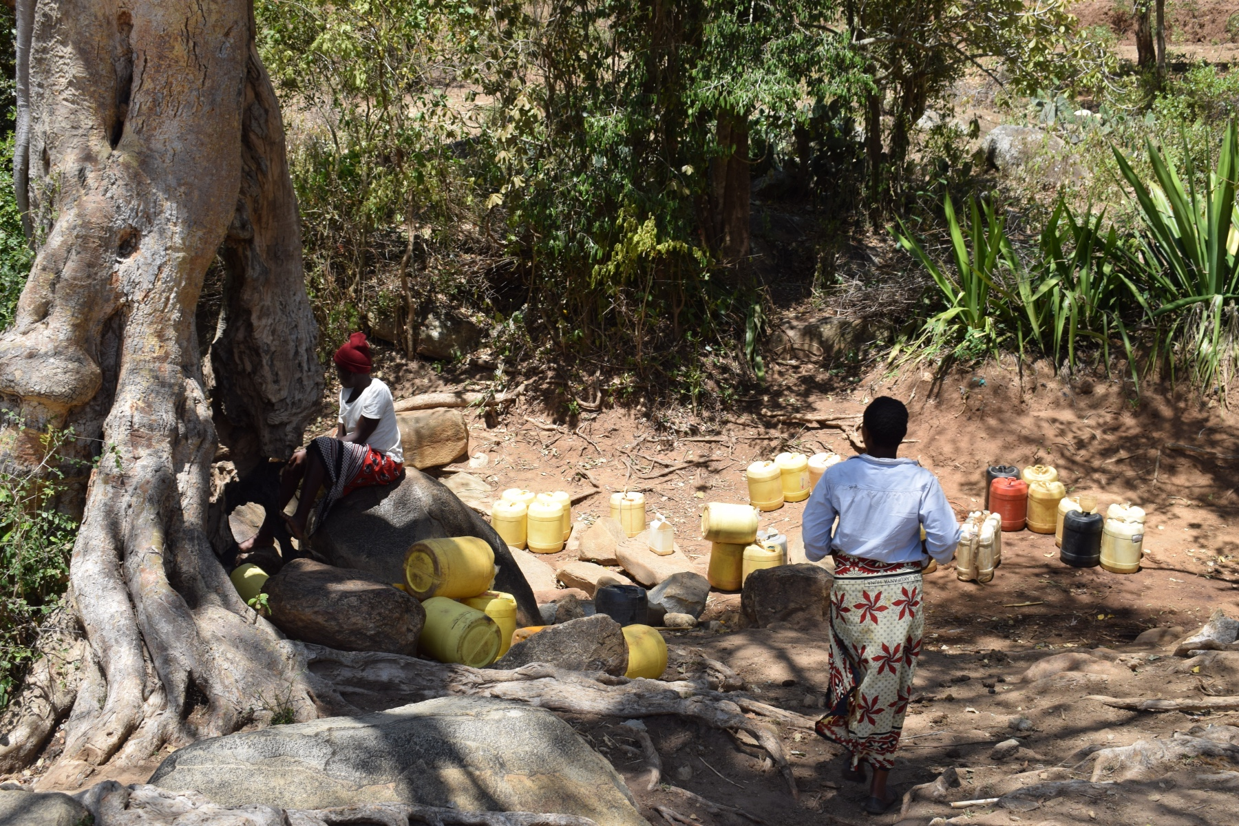 The Water Project : kenya18226-water-source