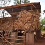 The Water Project: Utini Community A -  Chicken Coop