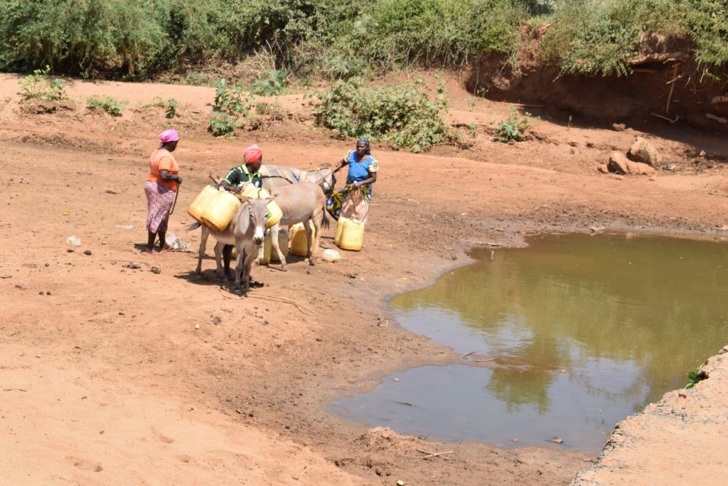 The Water Project : kenya18245-open-water-source