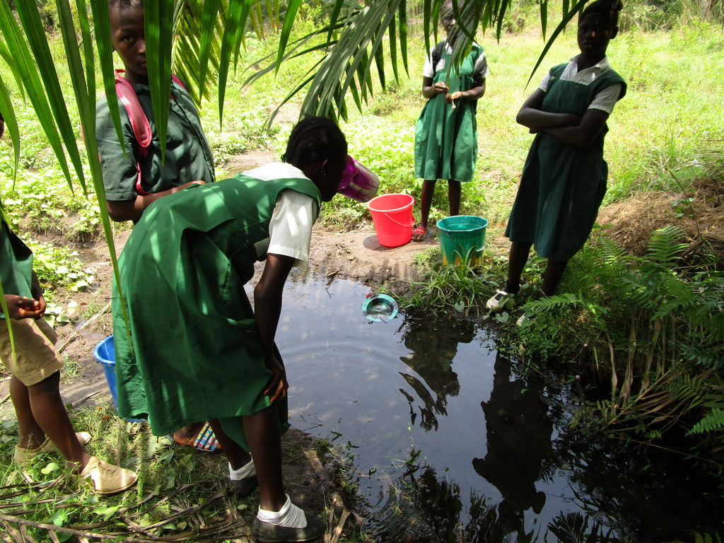 The Water Project : sierraleone18273-students-at-alternate-water-source