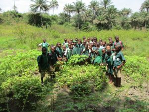 The Water Project:  Students In School Garden