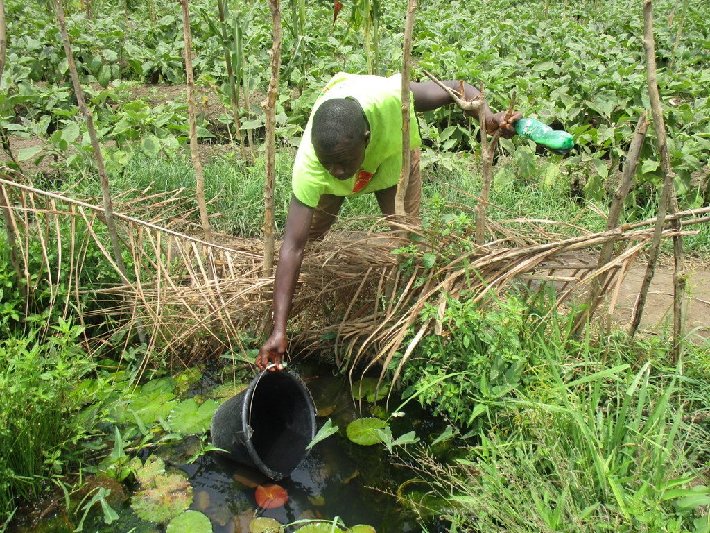 The Water Project : sierraleone18283-open-water-source