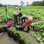 The Water Project: Moniya Community -  Fetching Water At Open Source