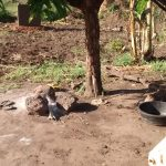 The Water Project: Nyakarongo Center Community -  Cooking Area