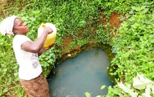 The Water Project:  Chisembe Spring