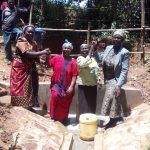 The Water Project: Wasenje Community, Margaret Jumba Spring -  Celebrating The Safe Protected Spring