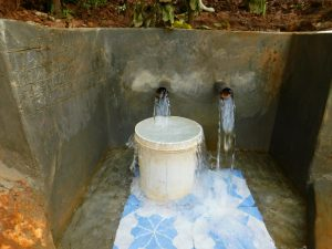 The Water Project:  Spring Water Flowing