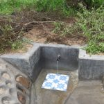 The Water Project: Masera Community, Ernest Mumbo Spring -  Clean Water Flows