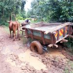 The Water Project: Mbande Community -  Bad Roads On The Way To The Spring