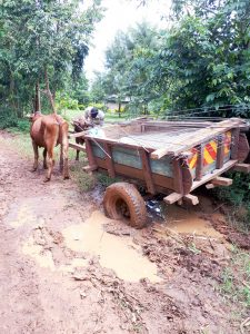 The Water Project:  Bad Roads On The Way To The Spring