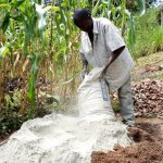 The Water Project: Ejinja Community, Anekha Spring -  Mixing Cement