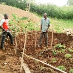 The Water Project: Musango Community A -  Building A Fence