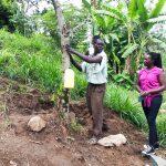The Water Project: Ejinja Community, Anekha Spring -  Handwashing Training