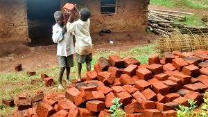 The Water Project:  Shuttling Bricks