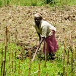 The Water Project: Bukhanga Community -  Working On The Farm