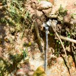 The Water Project: Mungakha Community, Nyanje Spring -  Current Water Source