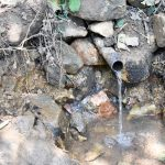 The Water Project: Mungakha Community, Asena Spring -  Current Water Source