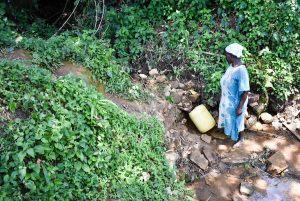The Water Project:  Josephine Fetching Water