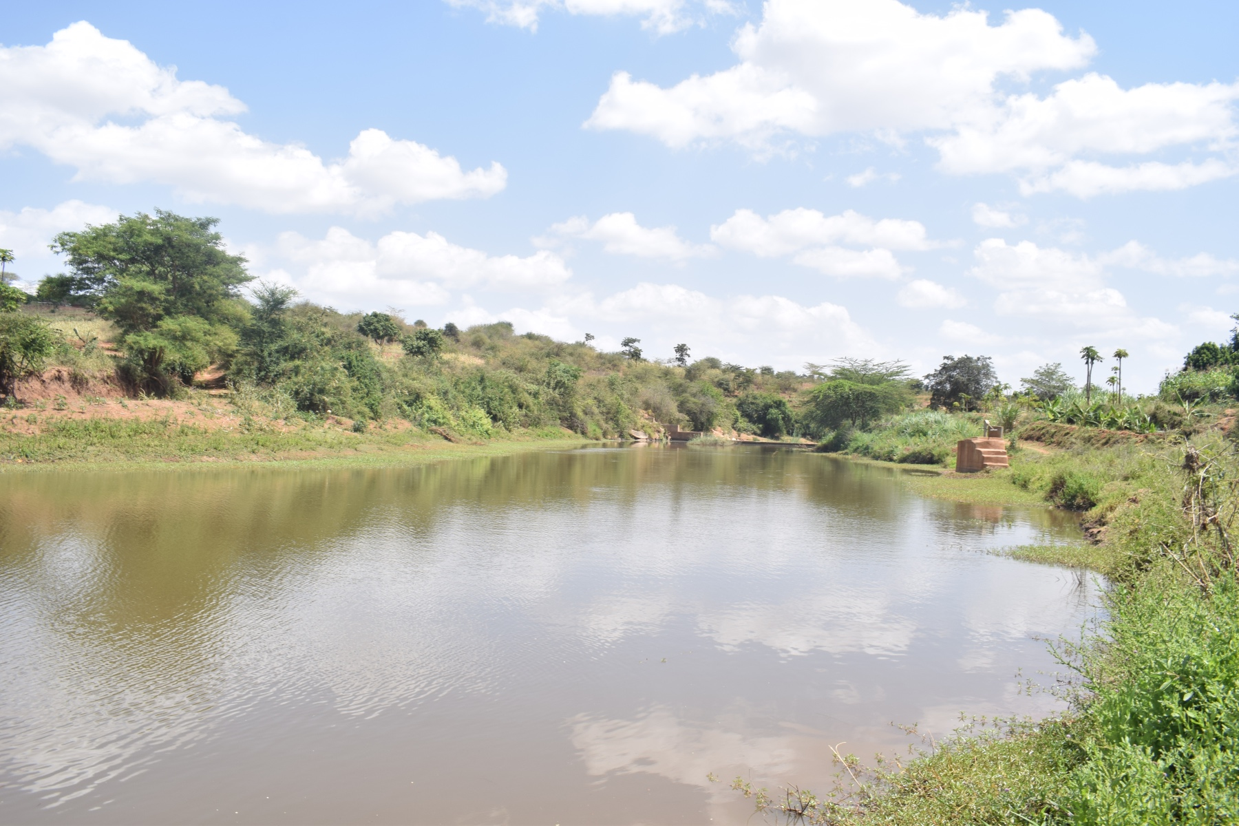 The Water Project : kenya4760-water-collects-thanks-to-the-dam