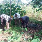 The Water Project: Handidi Community, Chisembe Spring -  Clearing Land Around The Spring