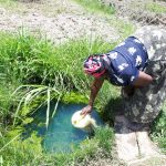 The Water Project: Luyeshe Community, Matolo Spring -  Vulenywa Fetching Water