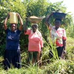 The Water Project: Luvambo Community, Timona Spring -  Getting Sand For Construction