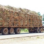 The Water Project: Luyeshe Community, Matolo Spring -  Truck Carrying Harvested Sugarcane To Factory
