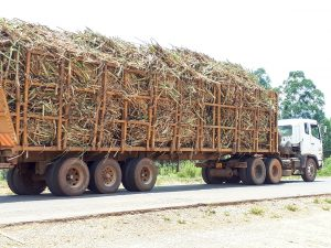 The Water Project:  Truck Carrying Harvested Sugarcane To Factory