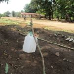 The Water Project: Tardie Community -  Handwashing Station A Year Later