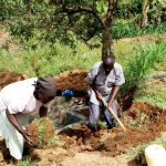 The Water Project: Mungaha B Community, Maria Spring -  Planting Grass