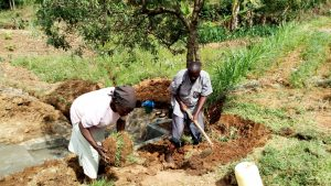 The Water Project:  Planting Grass