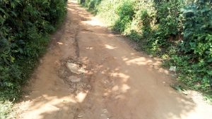 The Water Project:  Road Leading To The School