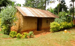 The Water Project:  A Typical Home In The Community