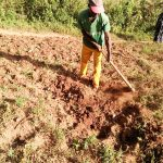 The Water Project: Shihingo Community, Mangweli Spring -  Man Working On His Farm