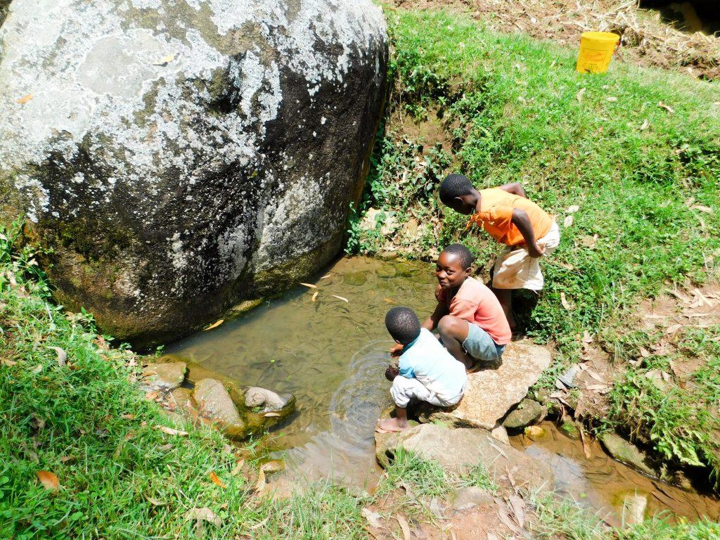 The Water Project : 11-kenya19089-ngeny-barak-spring